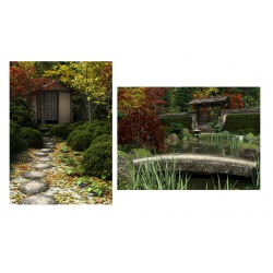 Japanese Garden Postcards